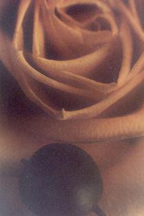 Blumengruß 1 by monika riemenschneider