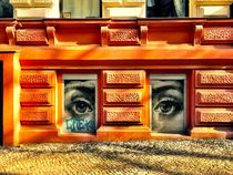 Zwei Augen von Ligia Fascioni