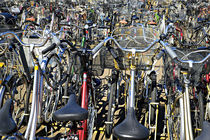 bicycle-parking by JACINTO TEE