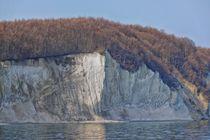 Kreidefelsen Insel Rügen by Jörg Hoffmann