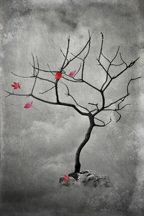'Natures Song' von CHRISTINE LAKE