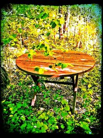 Table in the Backyard by Sabine Cox