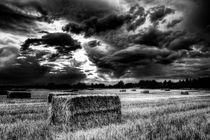 The Late Summer Farm England by David Pyatt