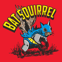 Mattfontainebatsquirrel