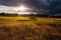 Awesome sunset above meadow by Arletta Cwalina