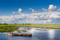 wooden boat in Biebrza wetland by Arletta Cwalina