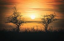 Beautiful sunset landscape von Arpad Radoczy