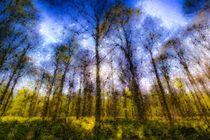 Pastel-art-trees