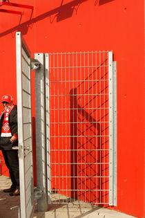 Lachender Fan  von Bastian  Kienitz