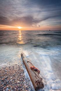 Strandgut by markusBUSCH FOTOGRAFIE