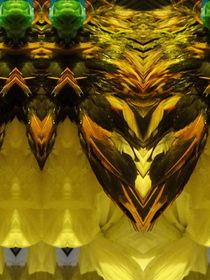 Golden Feathers by Panda Broad