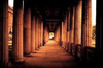 Columns von Glen Mackenzie
