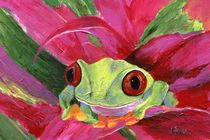 Ruby the Red Eyed Tree Frog von Jamie Frier