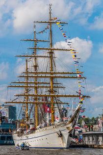 Hamburger Hafengeburtstag 2015 III by elbvue