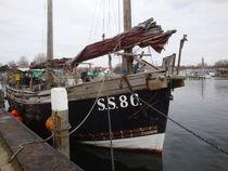 Boot von Ute Bauduin