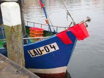 Bootsrumpf von Ute Bauduin