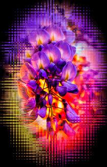 Blühende Fantasie 4 von Walter Zettl