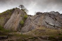 Dinas Rock von Leighton Collins