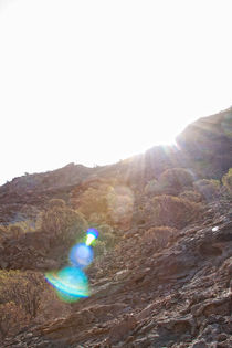 Saturn by Martina Raab