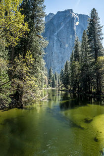 Yosemite Natural park by Stephane AUVRAY