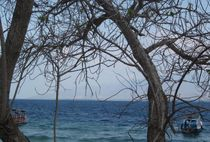 Hirsch-insel-pulau-kijang-bali4