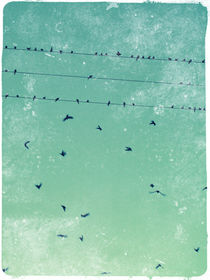 Flying-birds-rustic-2