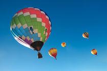 Balloons on Blue von David Hare