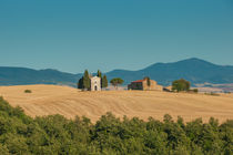 typical tuscan landscape by Konstantin Kalishko