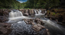 Cenarth Falls von Leighton Collins