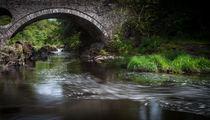 Cenarth bridge by Leighton Collins