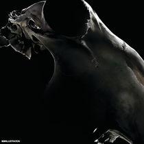 ANIMAL SKULL BLACK by SIMON HOWARD