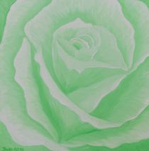 Grüne Rose by Barbara Kaiser