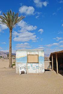 Sinai80