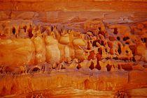 Sinai96