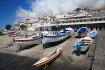 Portuguese harbour by Gaspar Avila