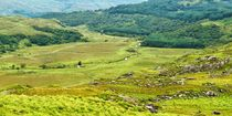P1180676-owenreagh-valley-neu