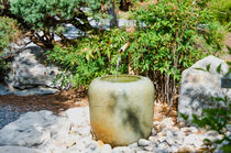 Japanese garden 6 by lanjee chee