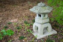 Japanese Lantern von lanjee chee