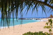 Brandons - Barbados von Tiago Garcia