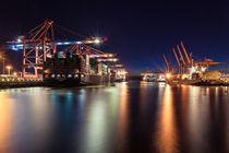Containerterminals Hamburg Waltershofer Hafen von Moritz Wicklein