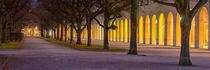 Autumn City by Mario Fichtner