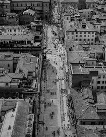 Bologna city centre aereial view by Federico C.