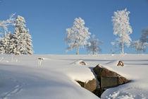 Lennequelle im Winter von Heidi Bücker