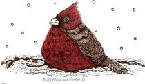 Cardinal in the snow  (c) ByMaryLeeParker  von Mary Lee Parker