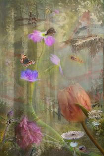 'Zauberwald' von © Ivonne Wentzler