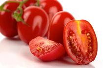 Tomaten-i