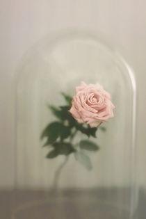The Last Rose von Trish Mistric