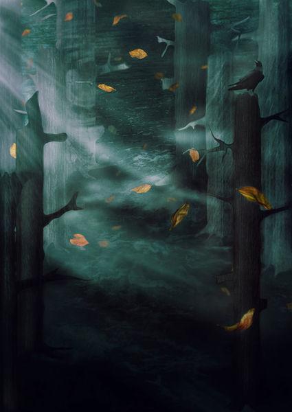 Inthewoodstonight-c-sybillesterk