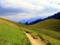 Höhenweg von Ulrike Ilse Brück