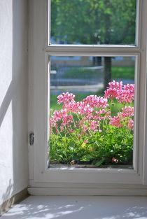 Kloster-zangberg39